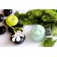 Tratamiento Envolturas en Algas